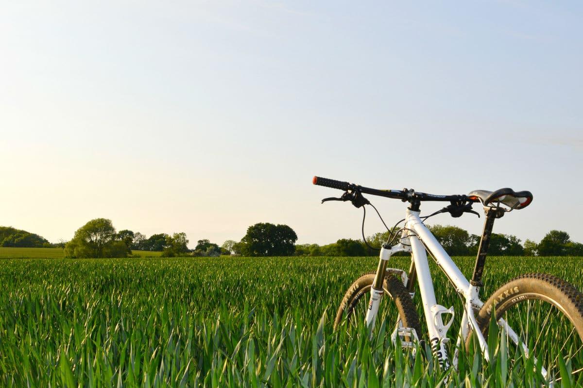 best mountain bikes for beginners