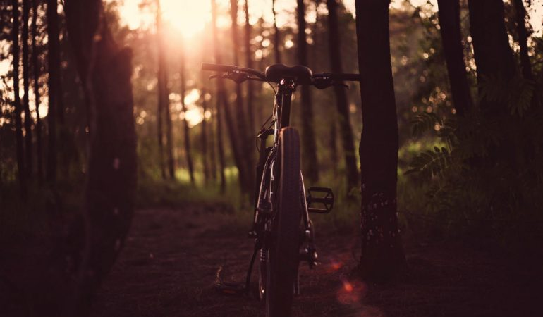 best mountain biking trails